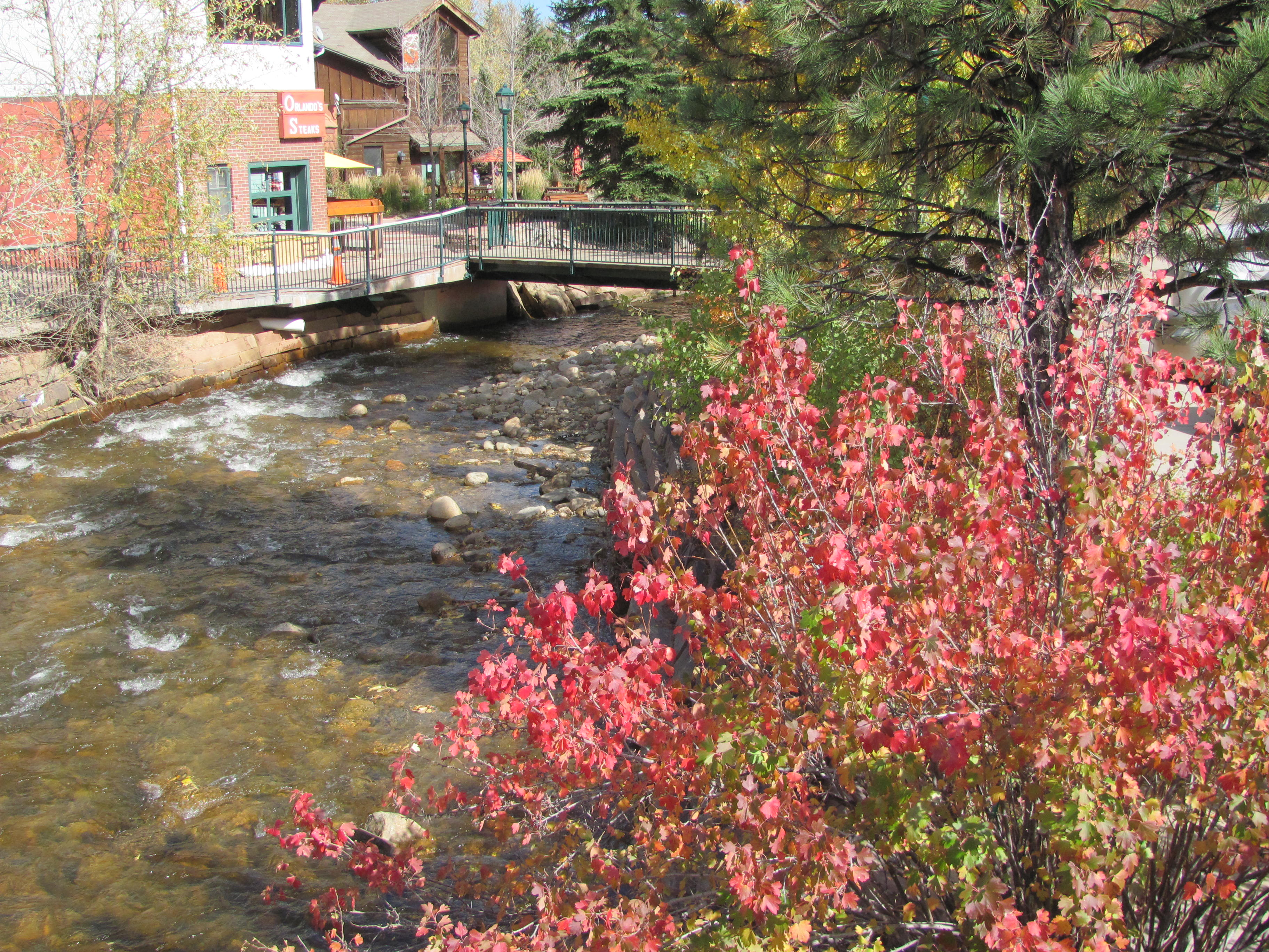 Fall Day in Estes Park
